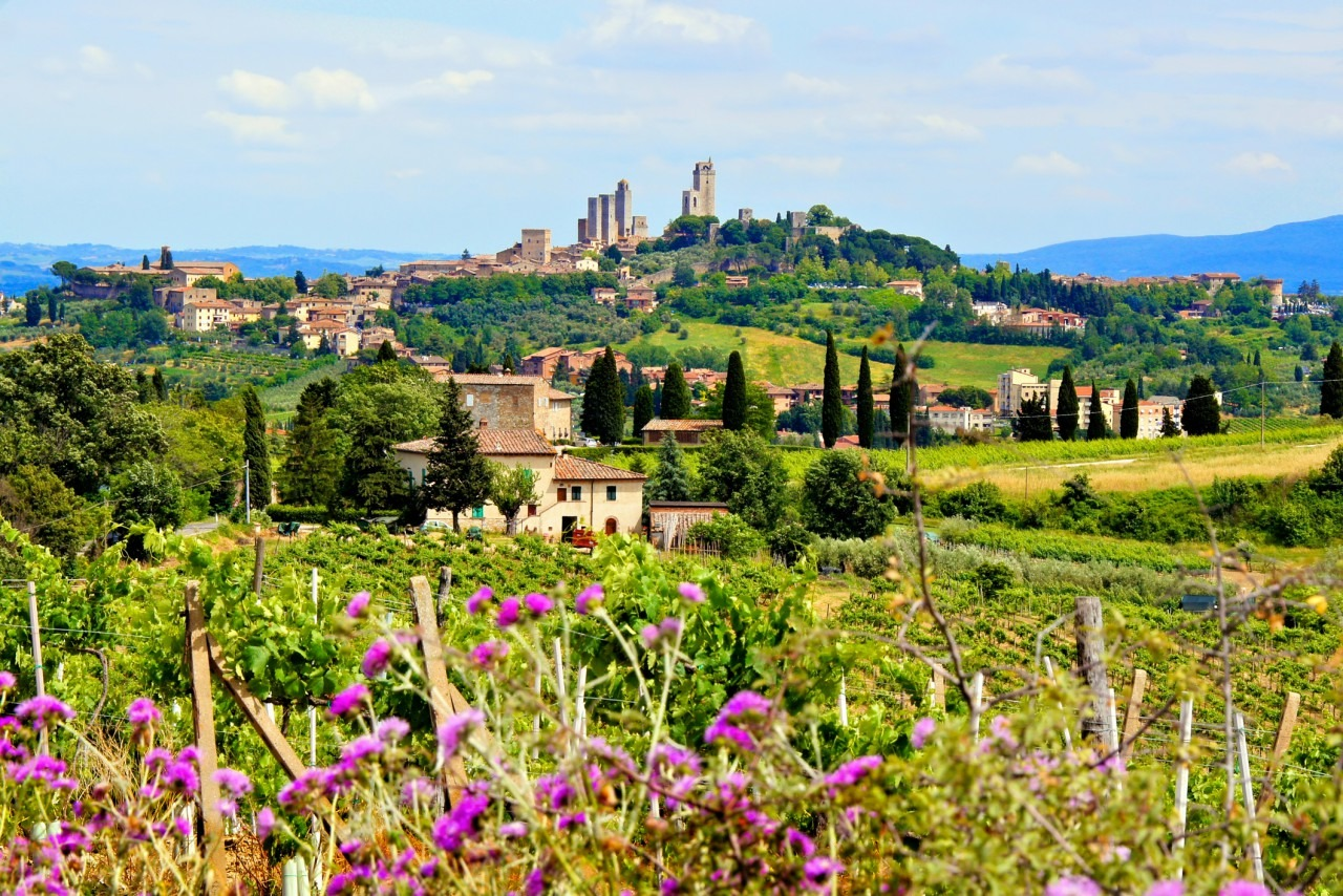 Italian Florence: Small Group Tuscany In One Day