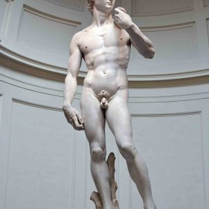 statue of David of Michelangelo, best Florence tour