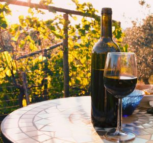 wine tasting in tuscany tour