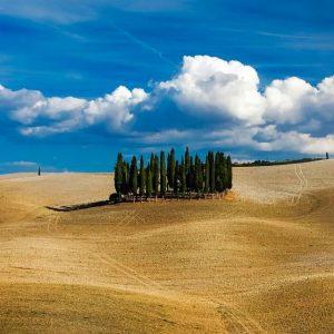 Amazing view in Tuscany: enjoy tuscany tour