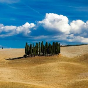 Tuscany best and original tour
