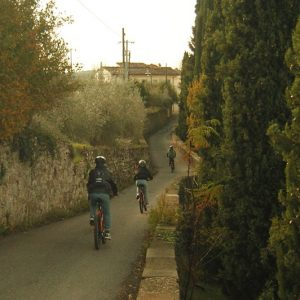 full day bike tour in Tuscany