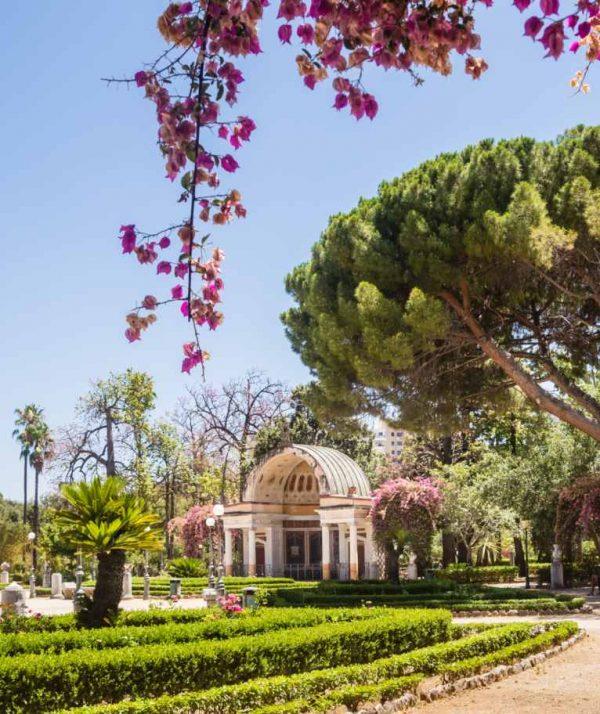 Palermo Botanic Garden Tour