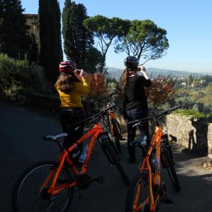 full day bike tour in Florence countryside