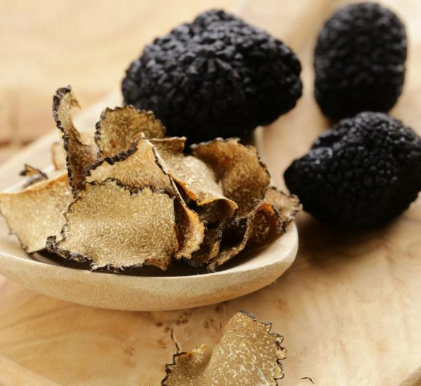 experience a Truffle Hunting in Tuscany Tour