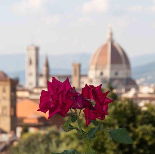 Italian-Passion